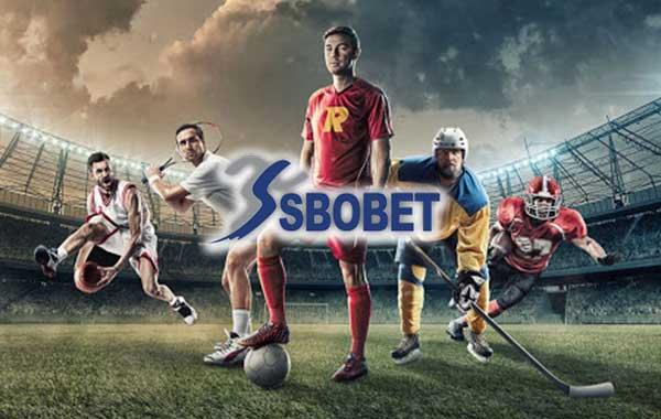 sbobet แทงบอลออนไลน์ยังไงให้ได้เงิน | Tomas Verner นักกีฬาไอซ์สเก็ตสุดฮอต